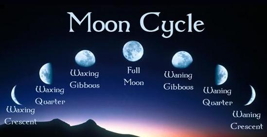 月亮变化图.jpg
