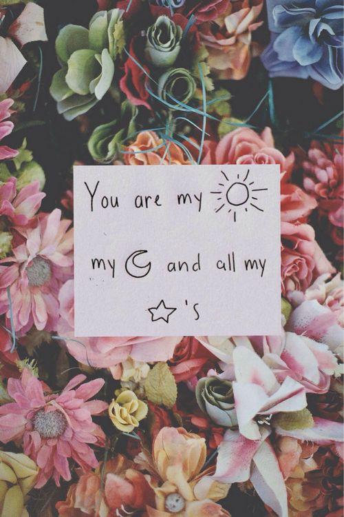 你是我的日月星辰.jpg
