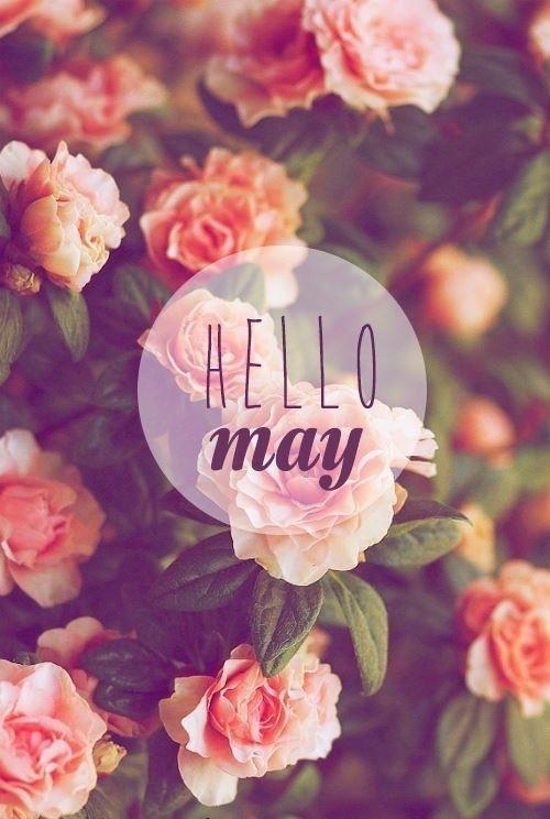 五月你好.jpg