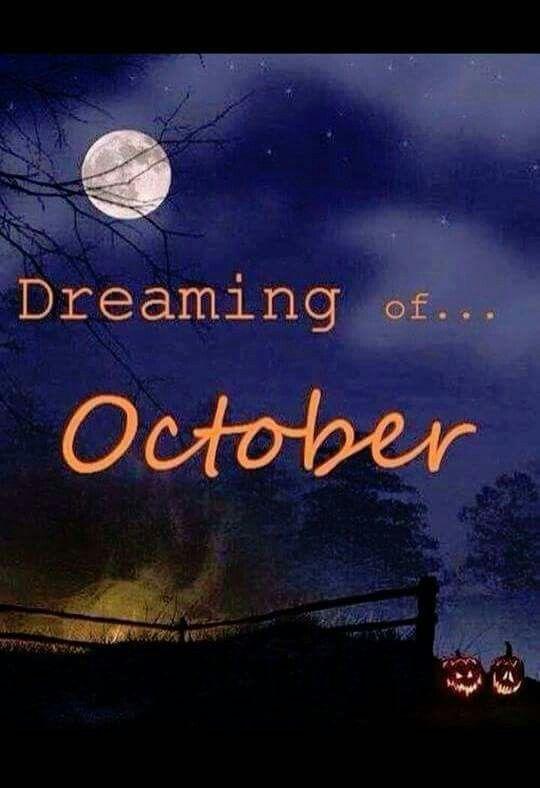 梦十月.jpg