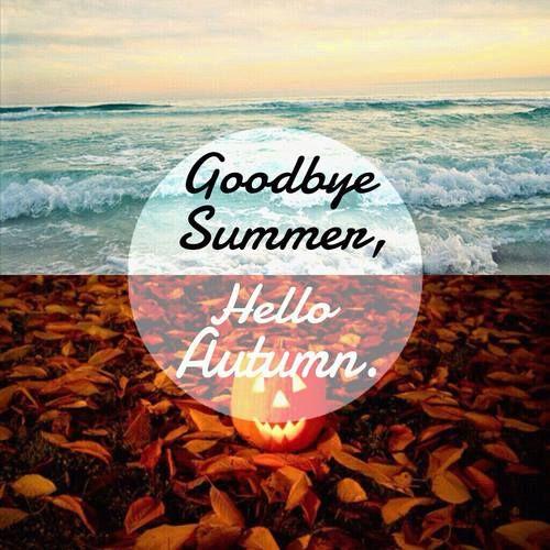 夏天再见.jpg