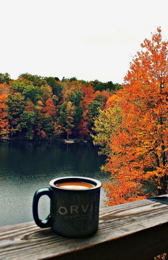 秋天的咖啡.jpg