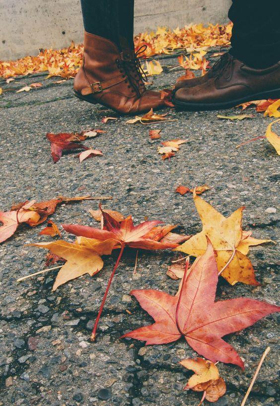 秋天的kiss.jpg