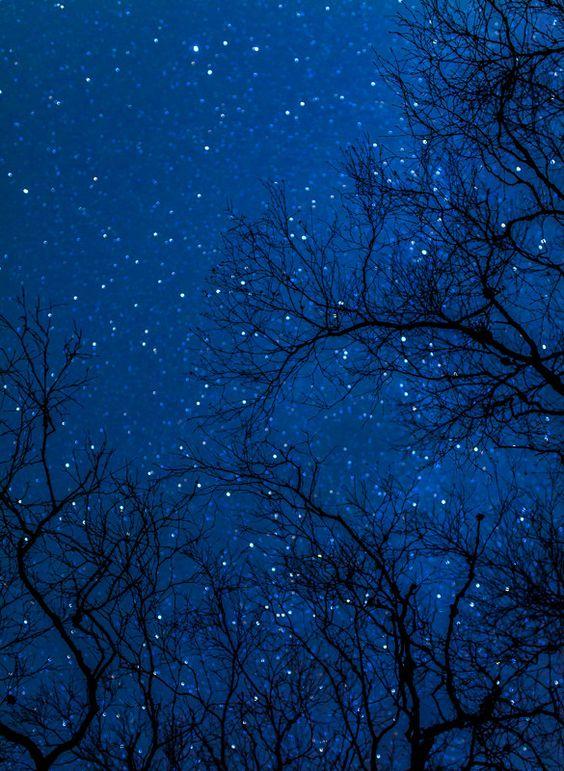 starsky.jpg