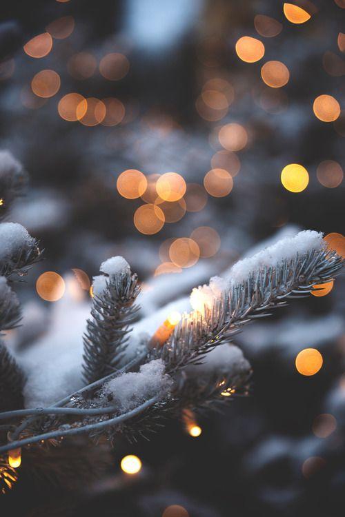 冬之光.jpg