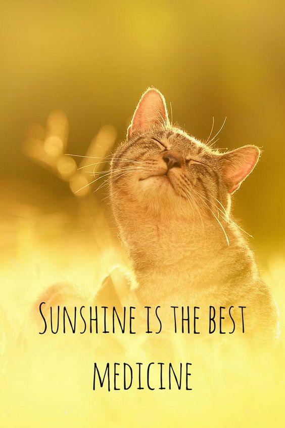 阳光是最好的药.jpg