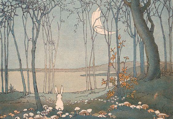 兔子与月亮.jpg