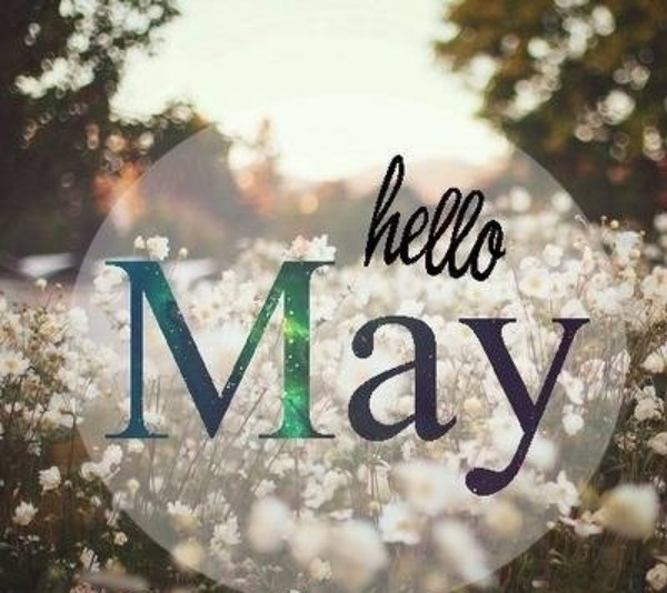 hello may.jpeg